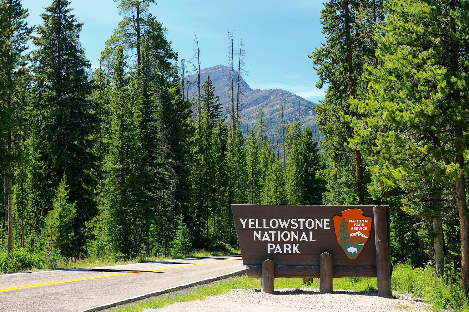 Yellowstone Northeast Entrance