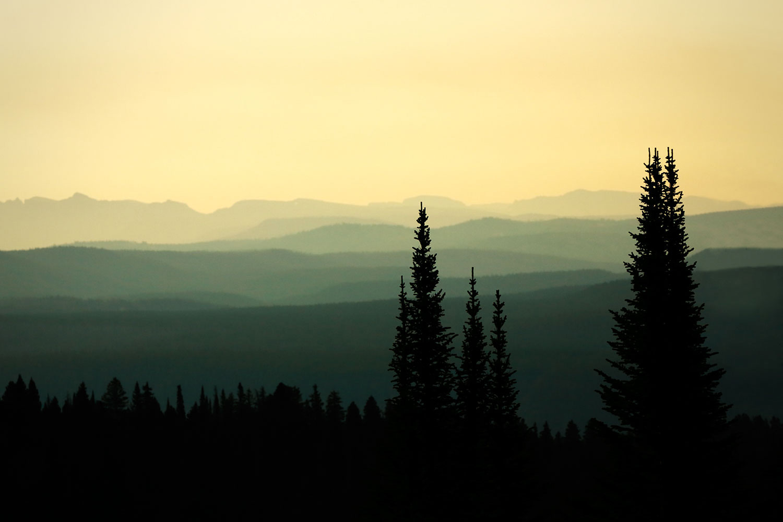 Mount Washburn Mist