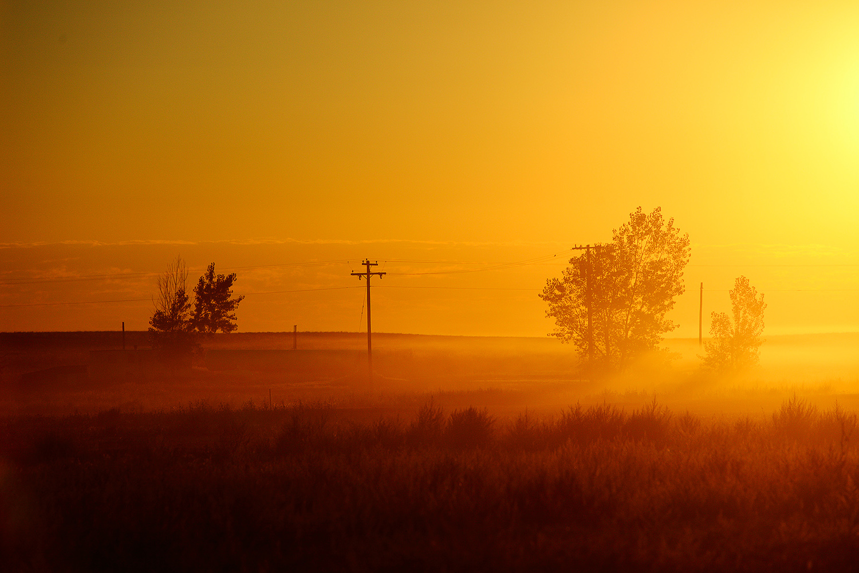 Misty Sunny Morning