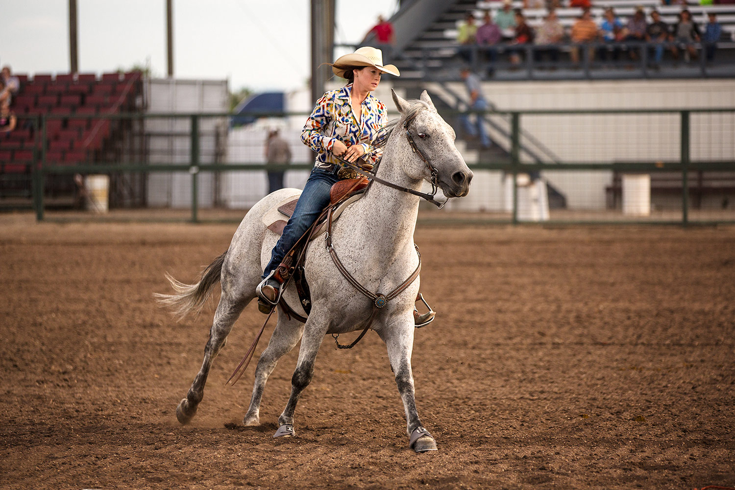 Barrel Racing Beauty