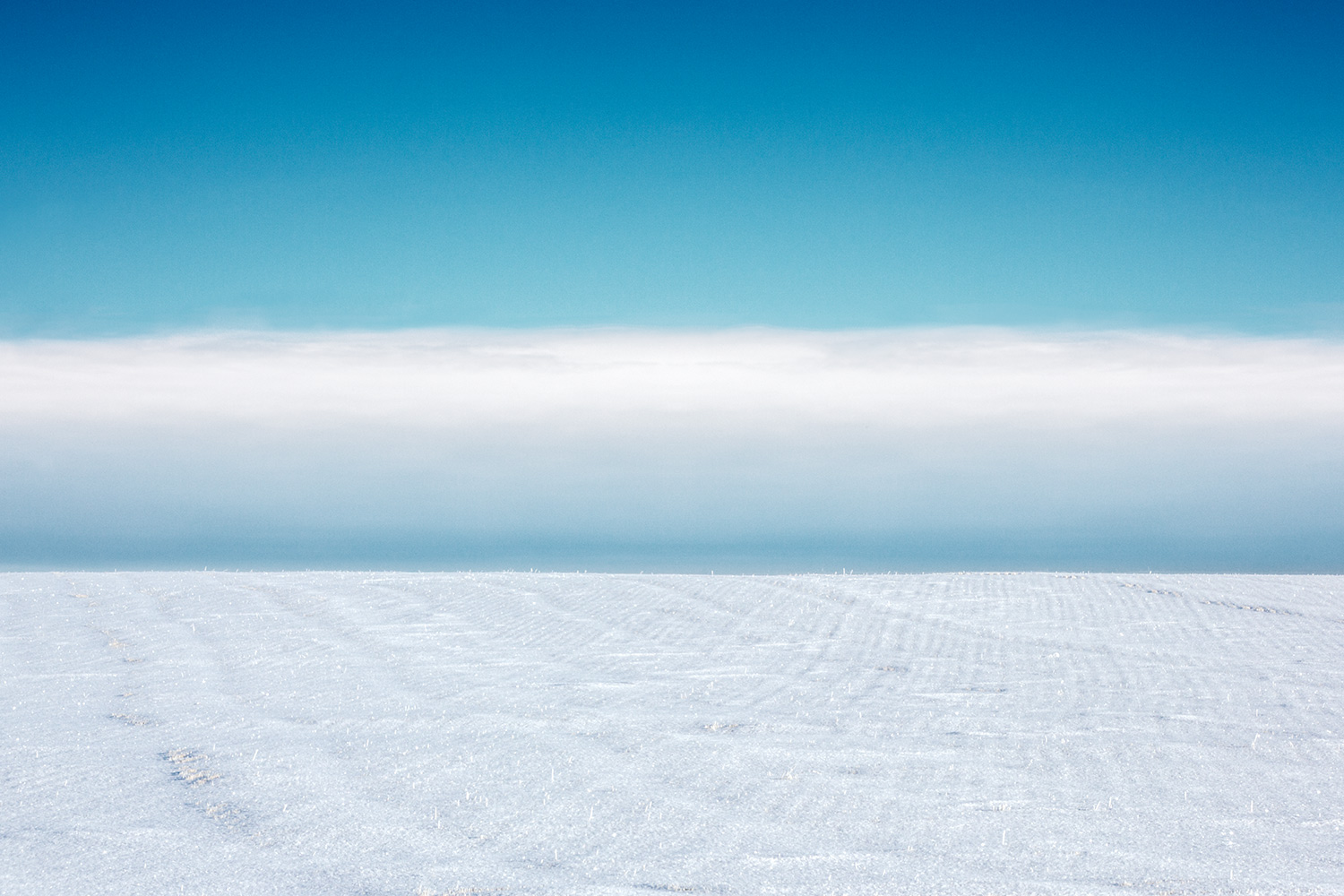 A winter storm front looms over the horizon on Montana's eastern plains north of Havre.    → Buy a Print
