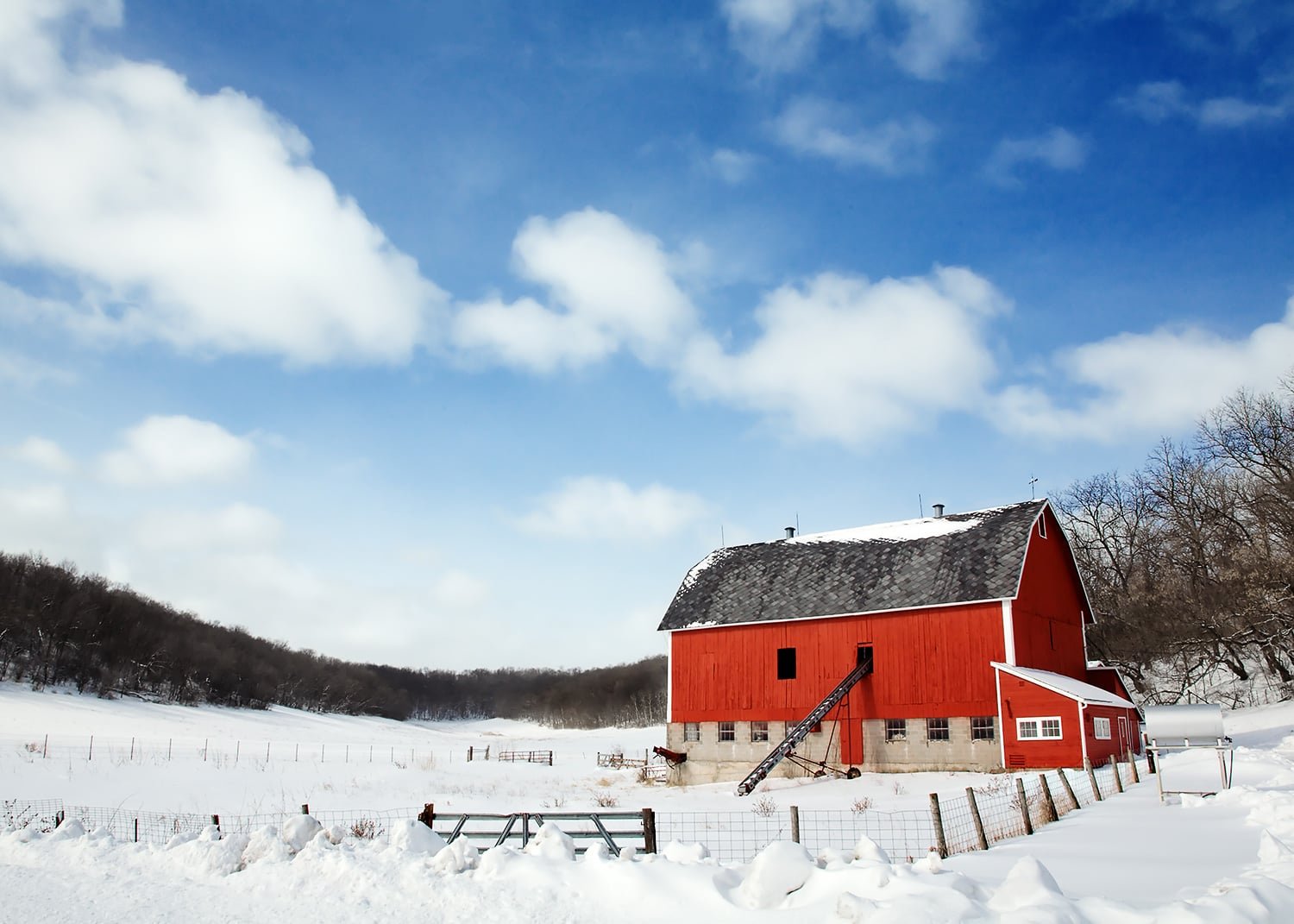 Freshly fallen snow clings to a little red barn just outside of Mount Horeb, Wisconsin.  → Buy a Print