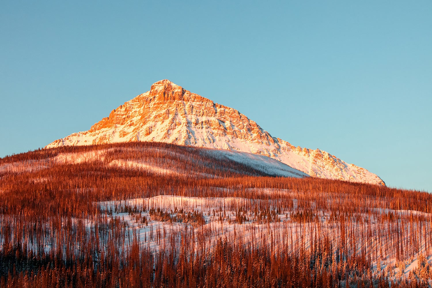 A morning view of the east face of Kupunkamint Mountain at Glacier National Park in Montana.  → Buy a Print