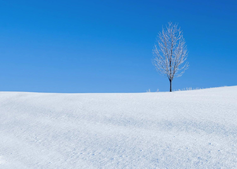 A Winter's Landmark