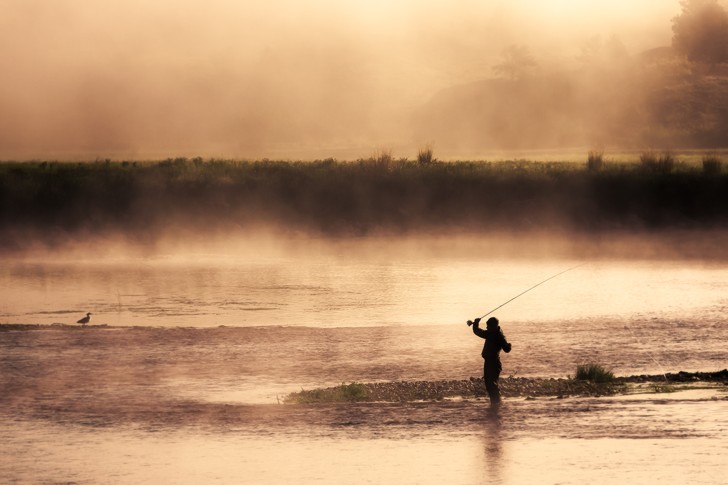 A silhouette of a fisherman casting his rod into the steamy Missouri River near Cascade, Montana. → Buy a Print