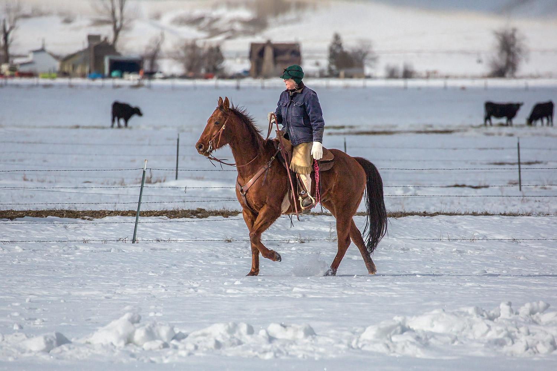 Cowgirl Stride