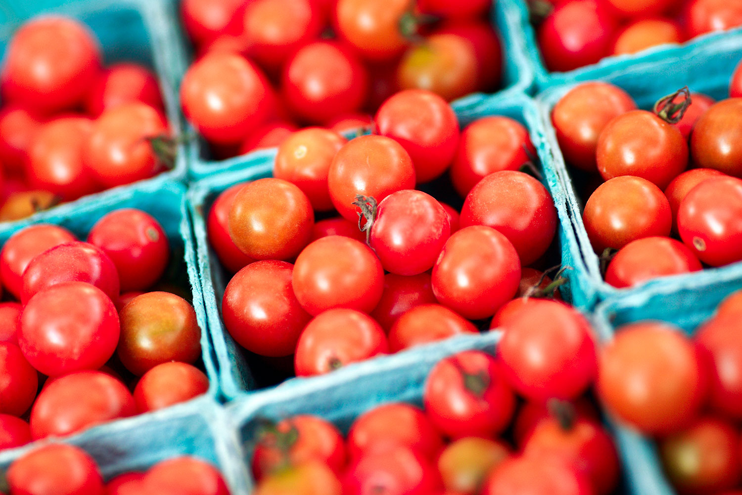Tiny Little Red Tomatoes