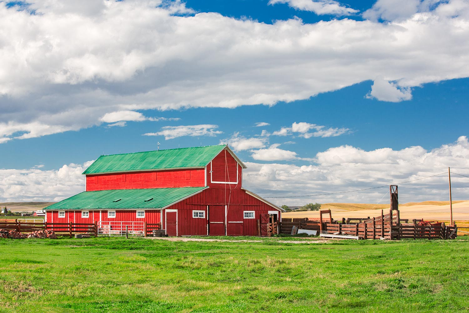 A beautiful red barn on a sunny summer day outside of Denton, Montana.  → Buy a Print  or   License Photo