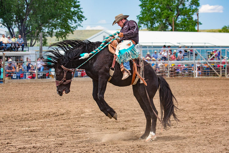 Black Stallion Ride