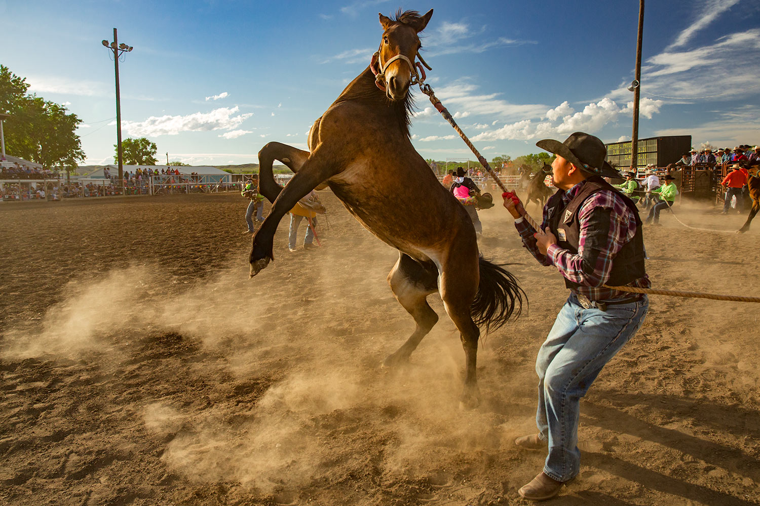 Roping a Wild One