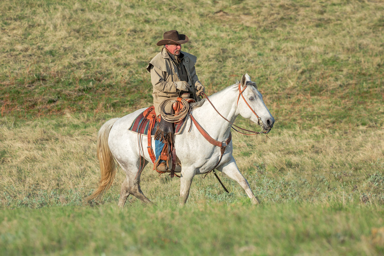 Cowboy on White