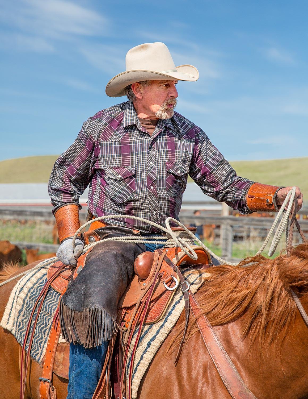Cowboy Roping Vertical
