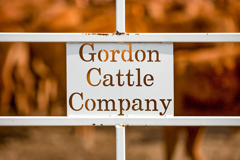 Gordon Cattle Company