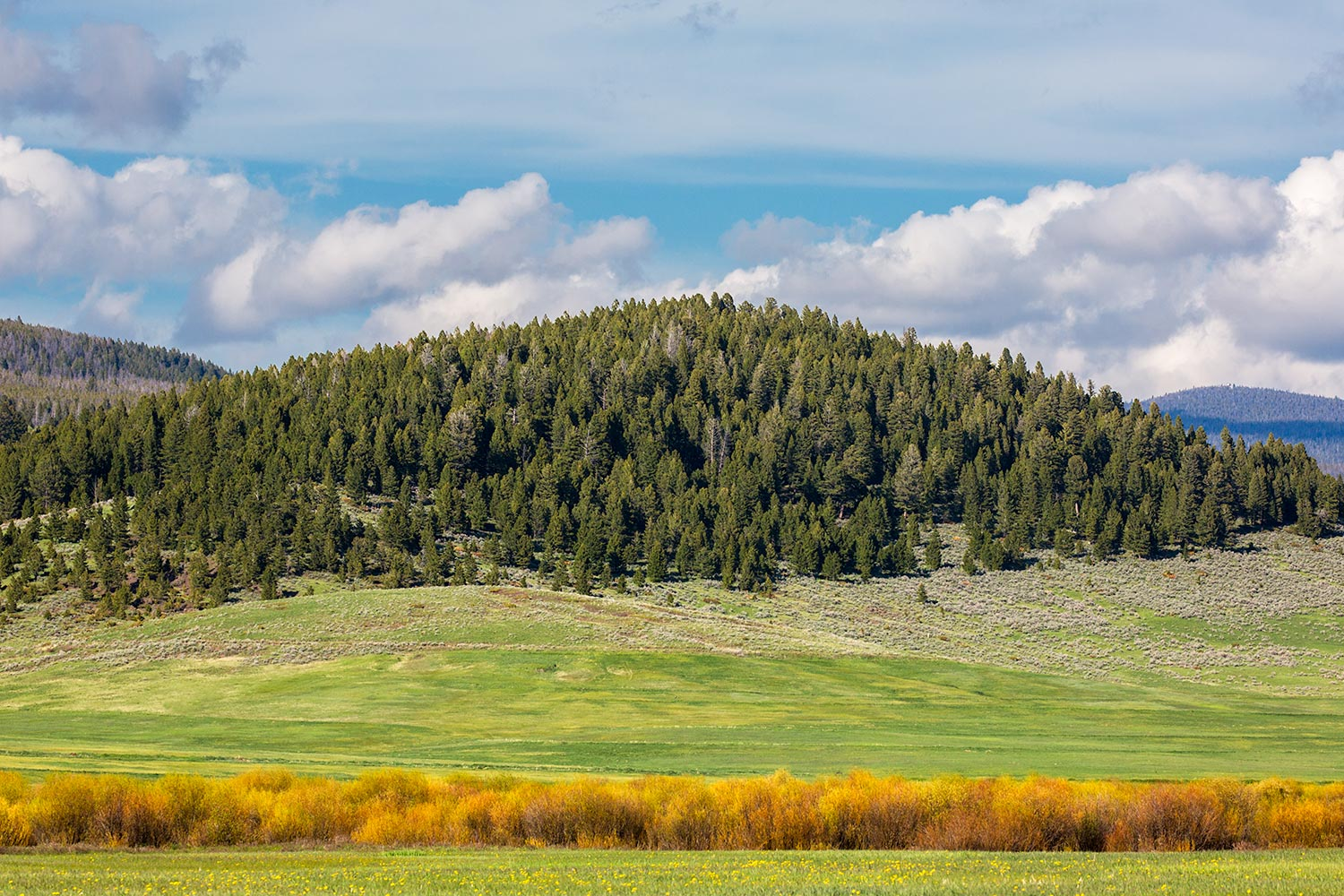 Meagher County Landscape