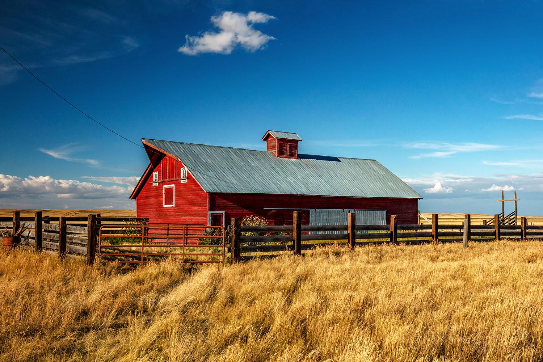A beautiful red barn on a farm near Agawam, Montana.  → Buy a Print  or   License Photo