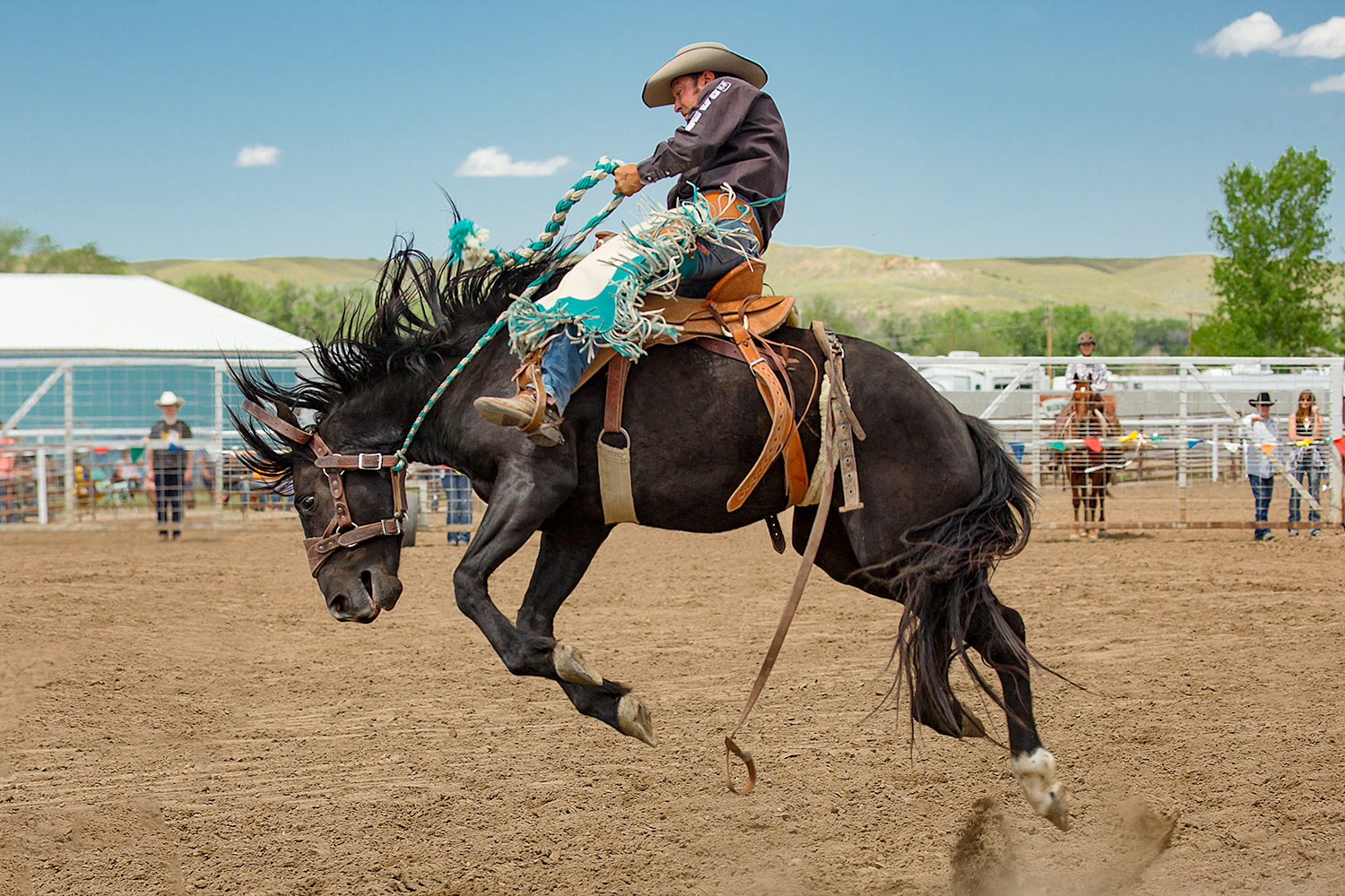 A bucking bronc rider holds on for dear life as his horse bucks real good coming out of the gate at the 2016 Miles City Bucking Horse Sale in Miles City, Montana.