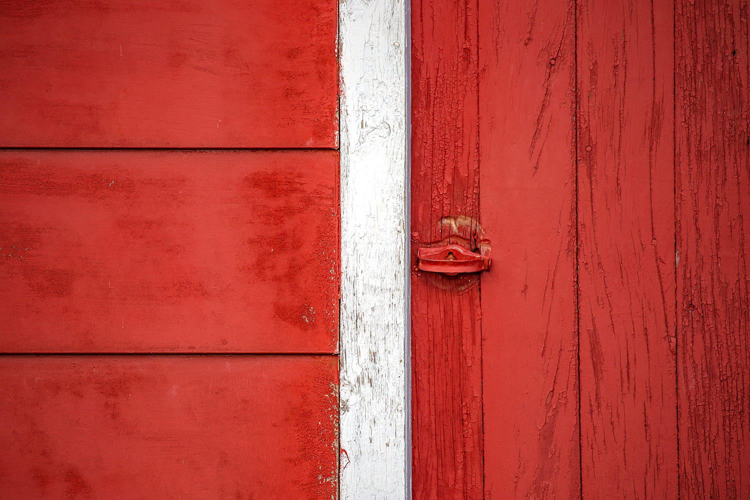 Bright red boards on the side of a barn on a farm near Circle, Montana.     → Buy a Print   or   License Photo