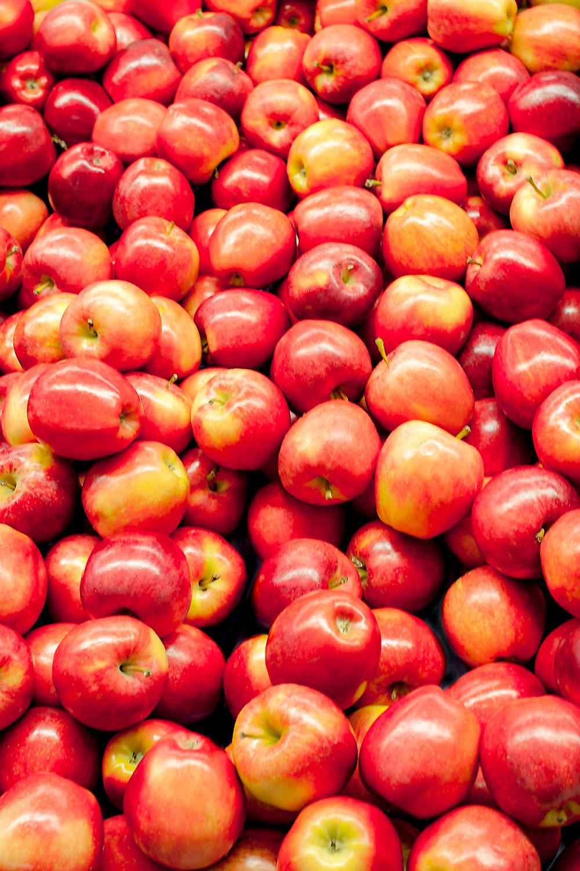 Bountiful Apples