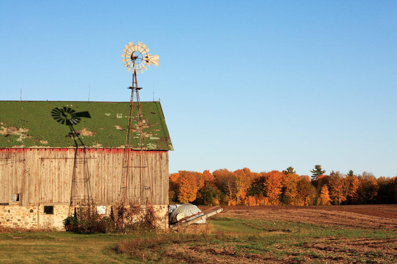 Behind the Barn