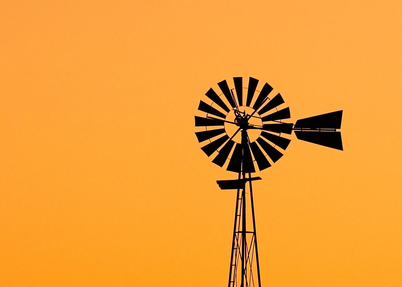 Run of the Wind Mill