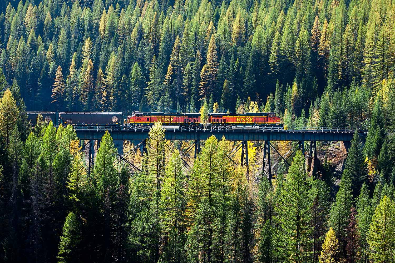Train Coming Through