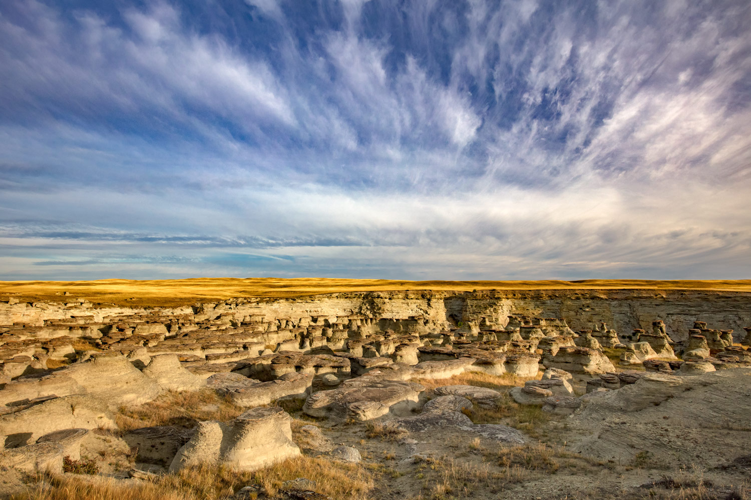 A maze of water eroded sandstone pillars and hoodoos called Rock City near Valier, Montana.