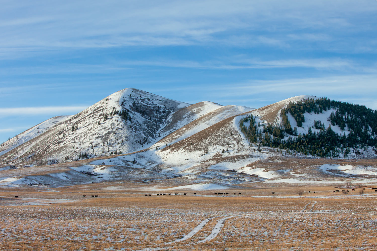 Snowy Buttes