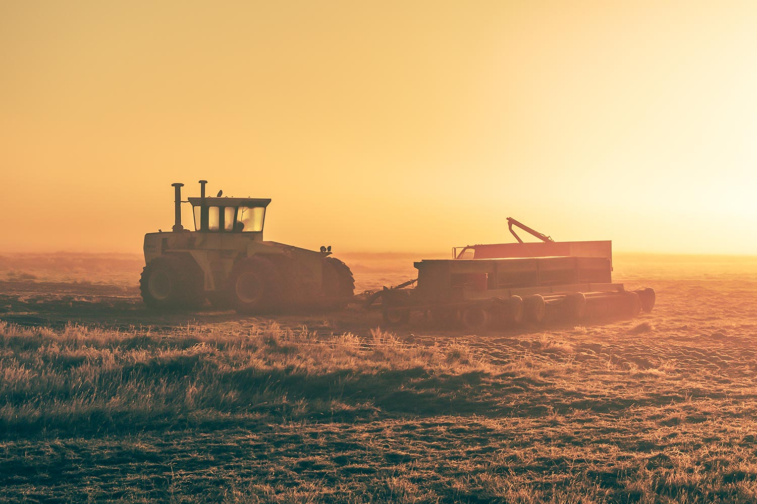 Tractor Morning Glow