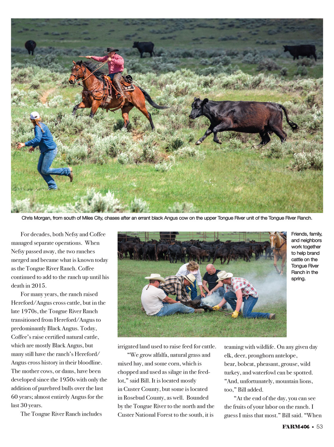 Ranching-Agricultural-Stock-Photos-Used-in-Magazine-04.jpg