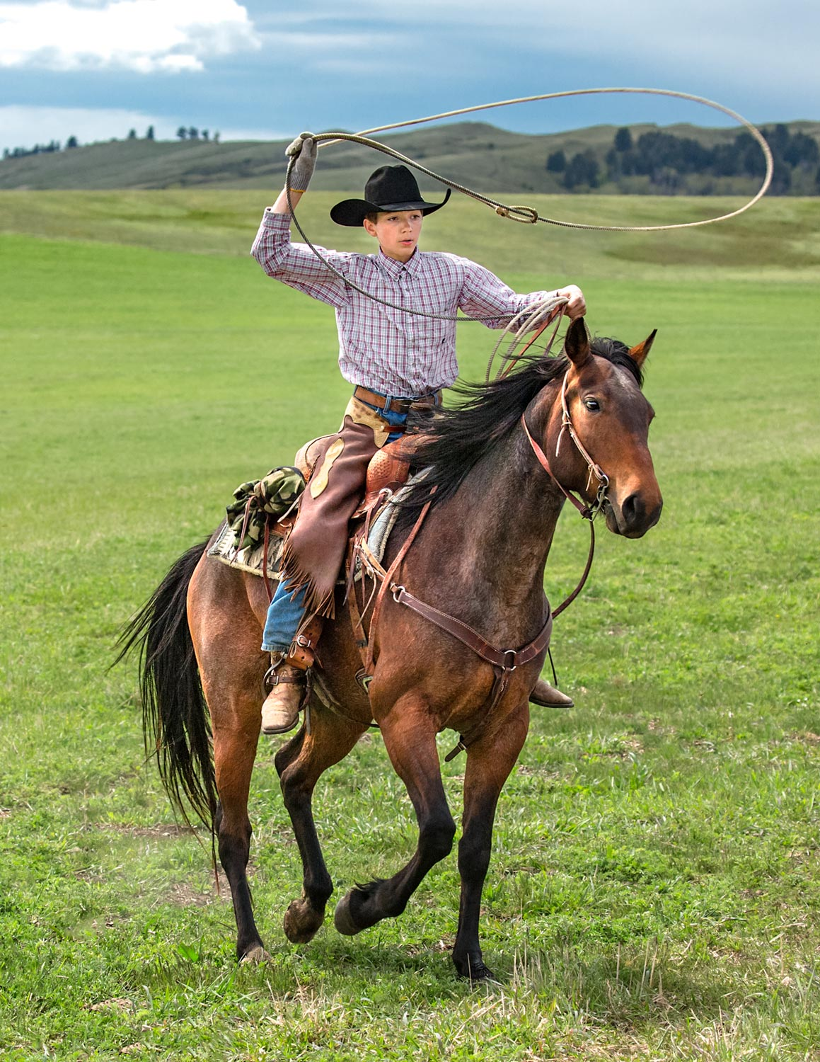 A young cowboy roping cattle on a ranch near Cleveland, Montana.  → License Photo