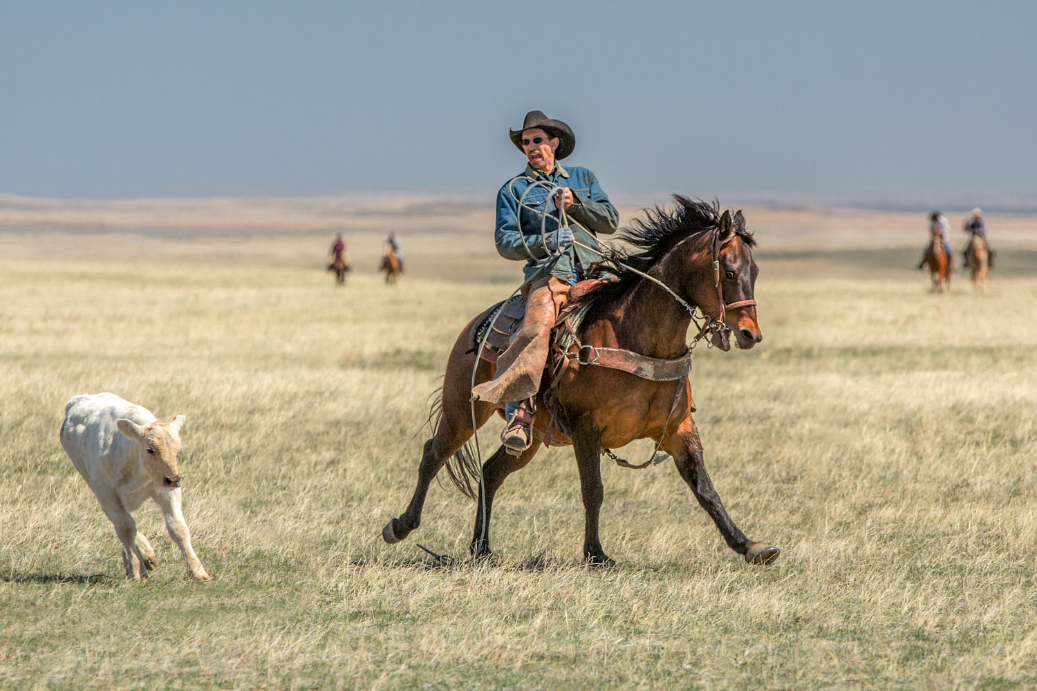 Cowboy-and-Horse-Coming-to-an-Abrupt-Stop.jpg