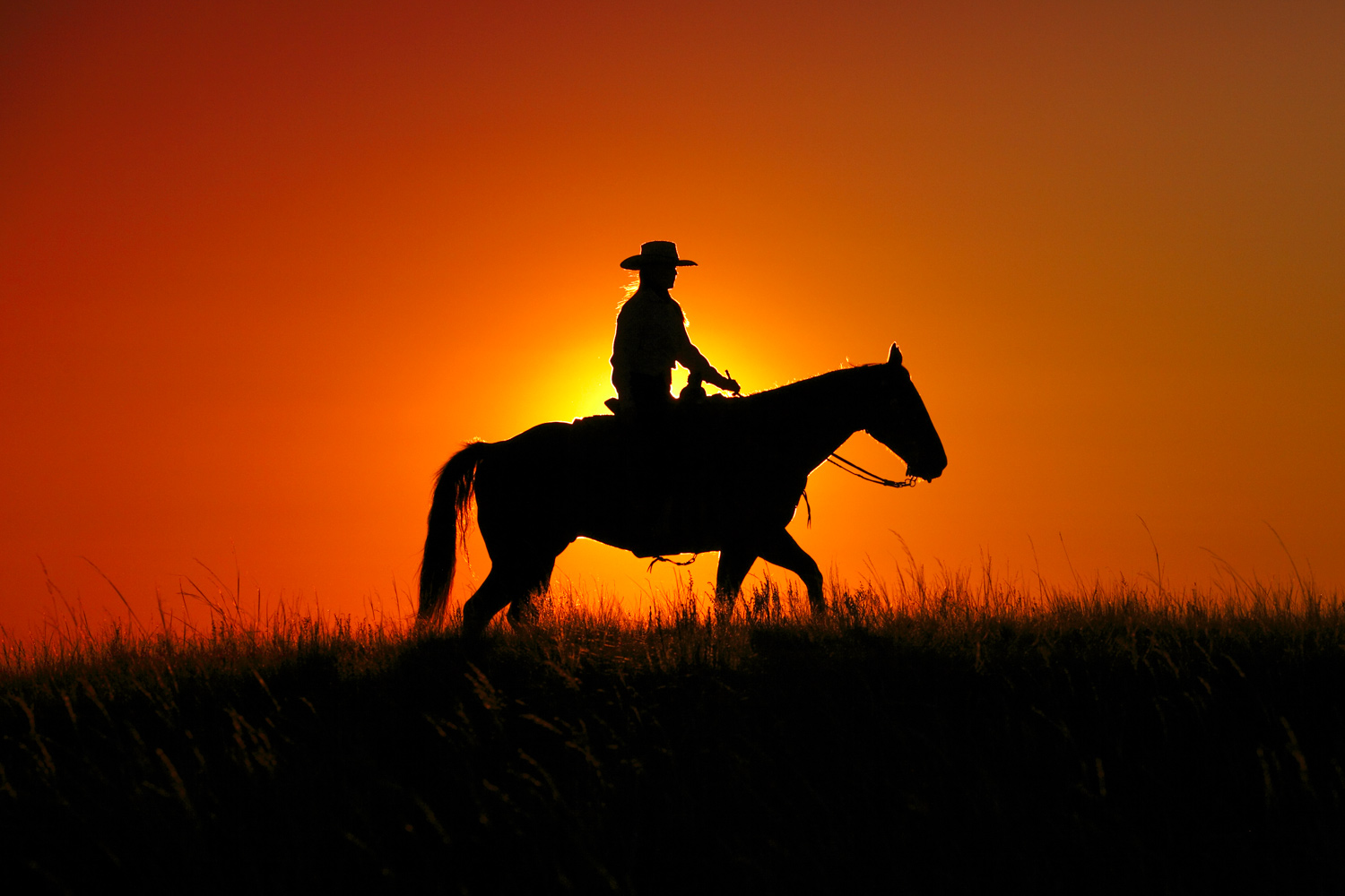 The silhouette of a young woman and her horse outside of Havre, Montana.  → License Photo