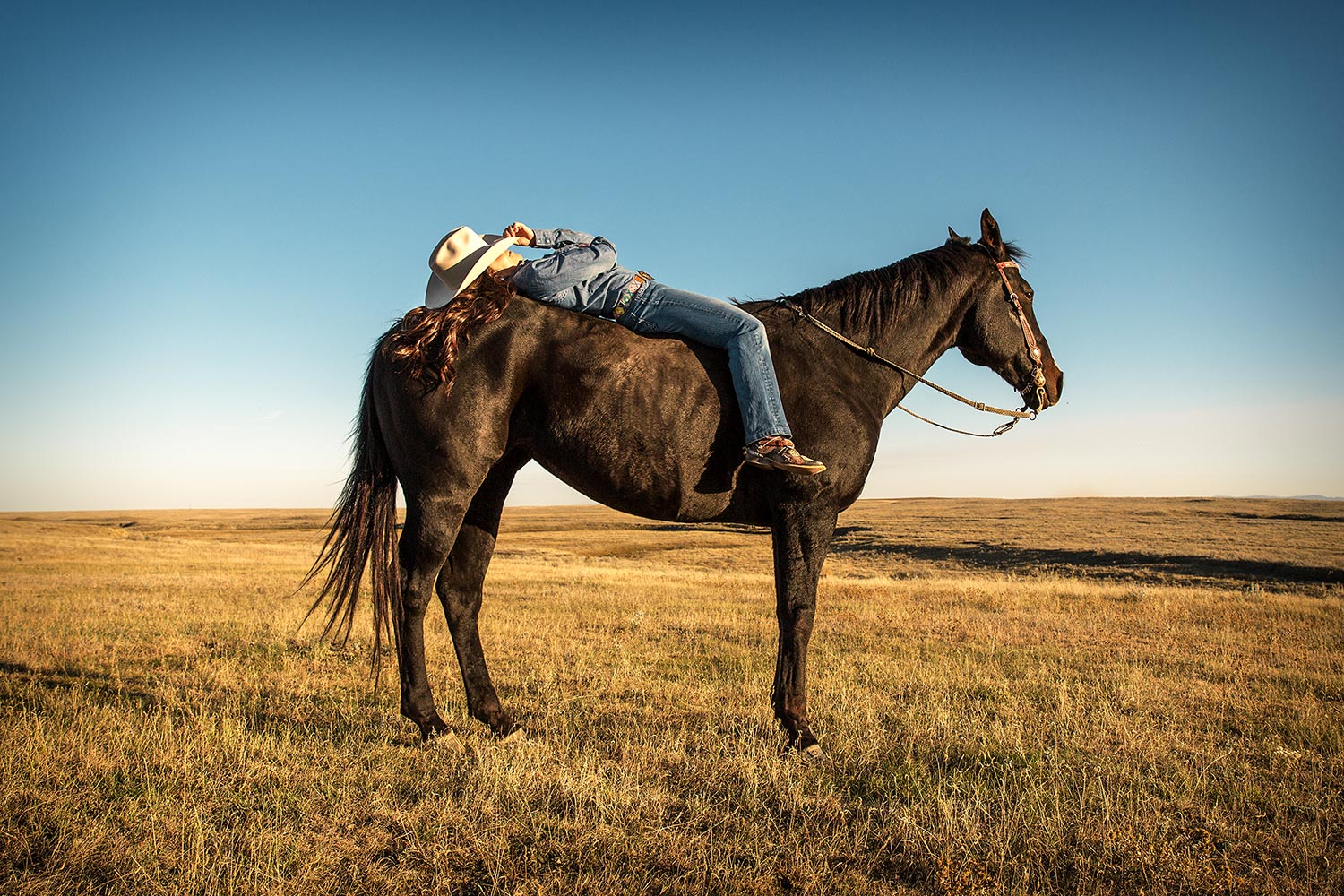 Katie takes a break on her horse near Fort Belknap, Montana.   → Buy a Print   or   License Photo