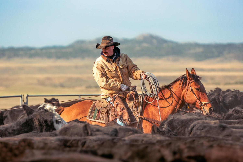 Cowboy's Corral