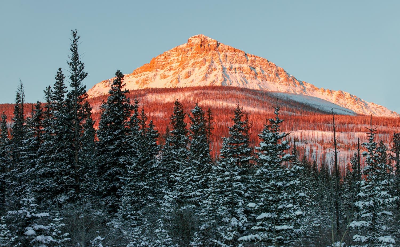 Kupunkamint Mountain Morning