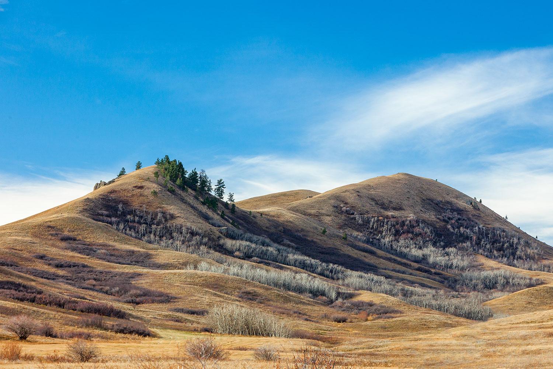 Beaver Creek Hills