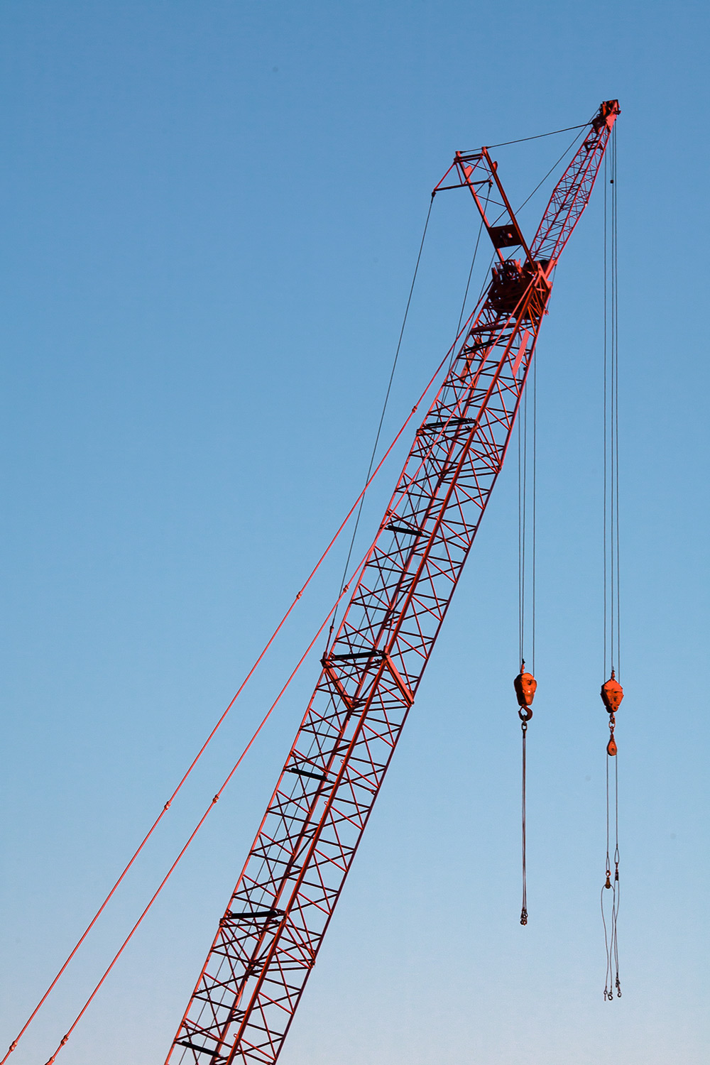Red Crane Vertical