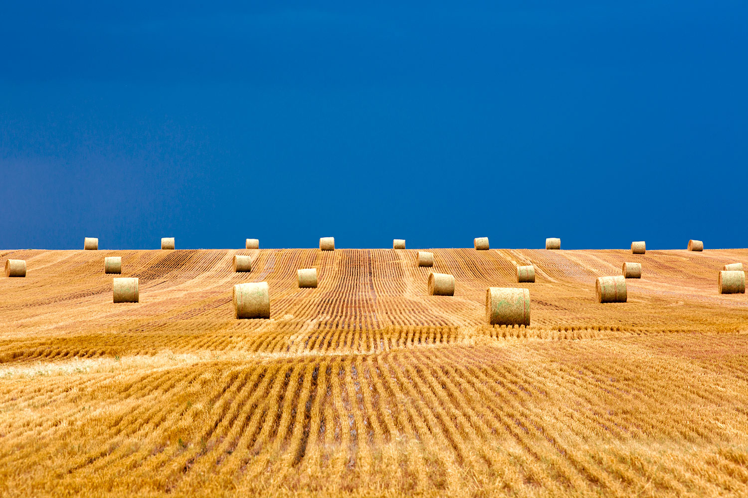 Bales on the Storm