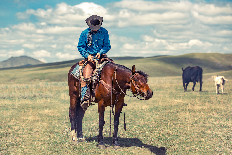 Cowboy Prose