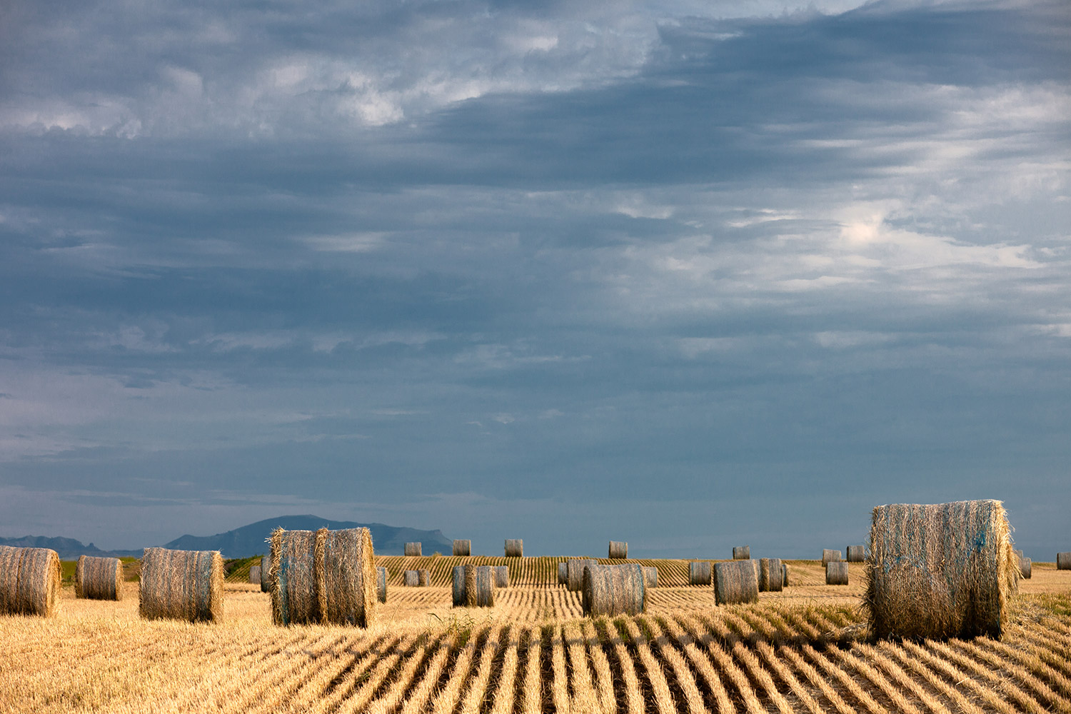 Bales After the Storm