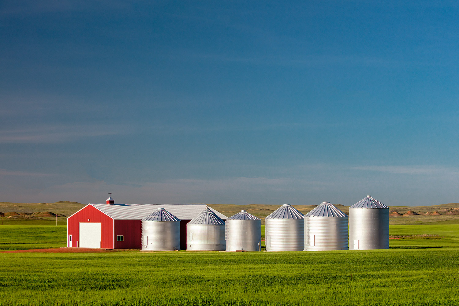 6 Bins and a Red Shed