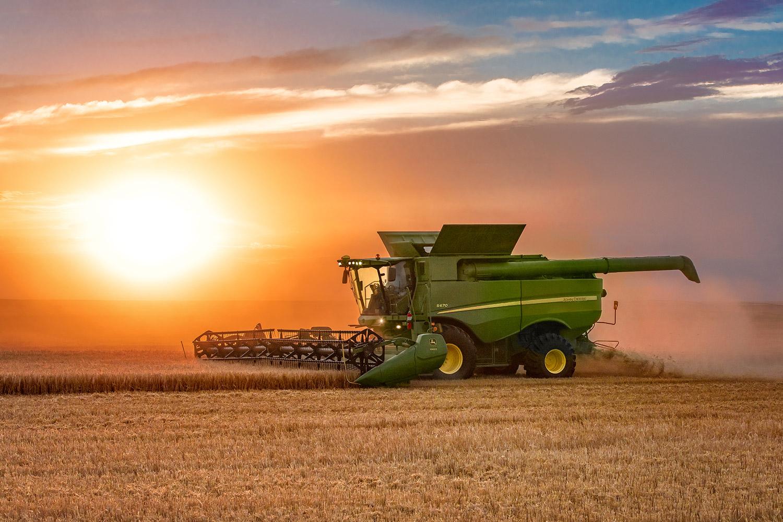 Bright Harvest