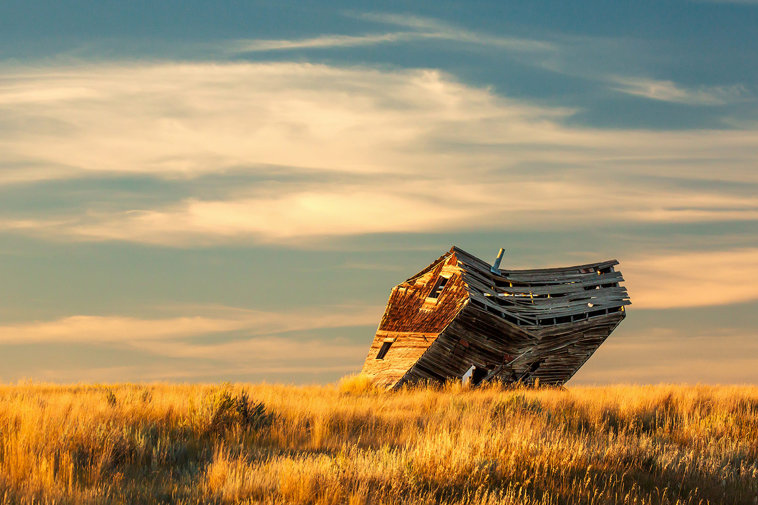 An old leaning shack is on the verge of falling down on a farm near Chinook, Montana.  → Buy a Print  or  License Photo