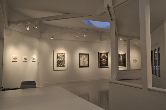 Picture This, Imagine That installation shot