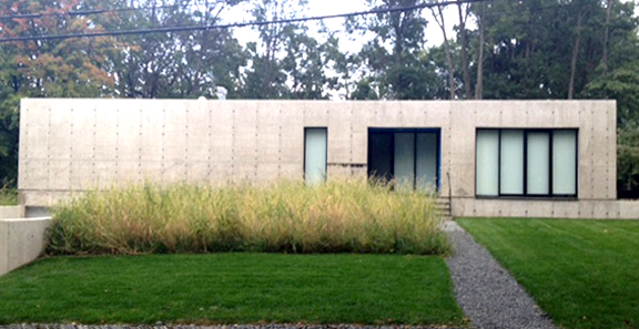 The walkway up to the front door. The high grass is a nice touch.