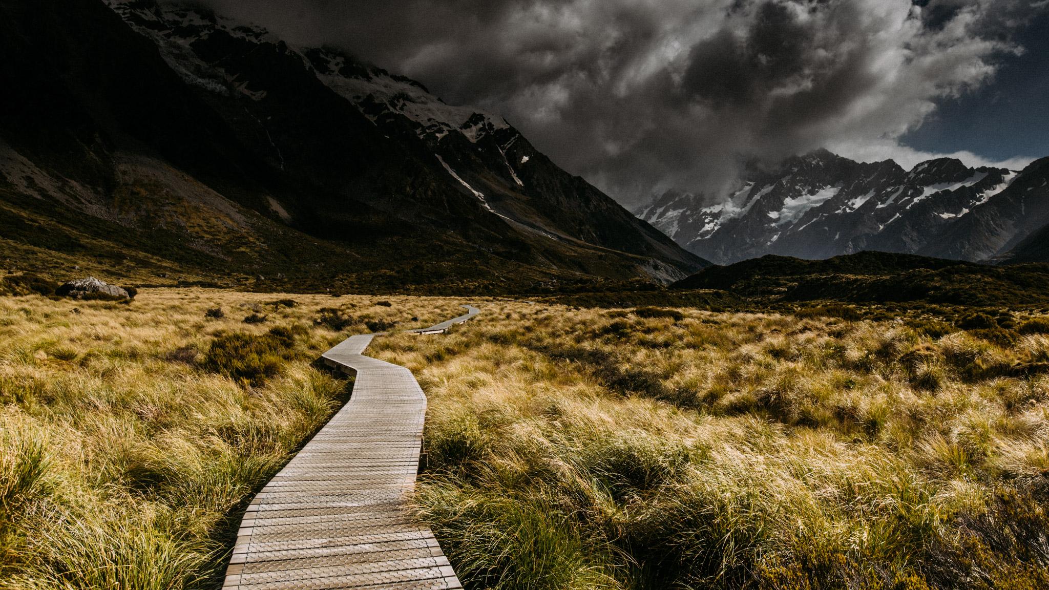 MCS_NZ-213.jpg