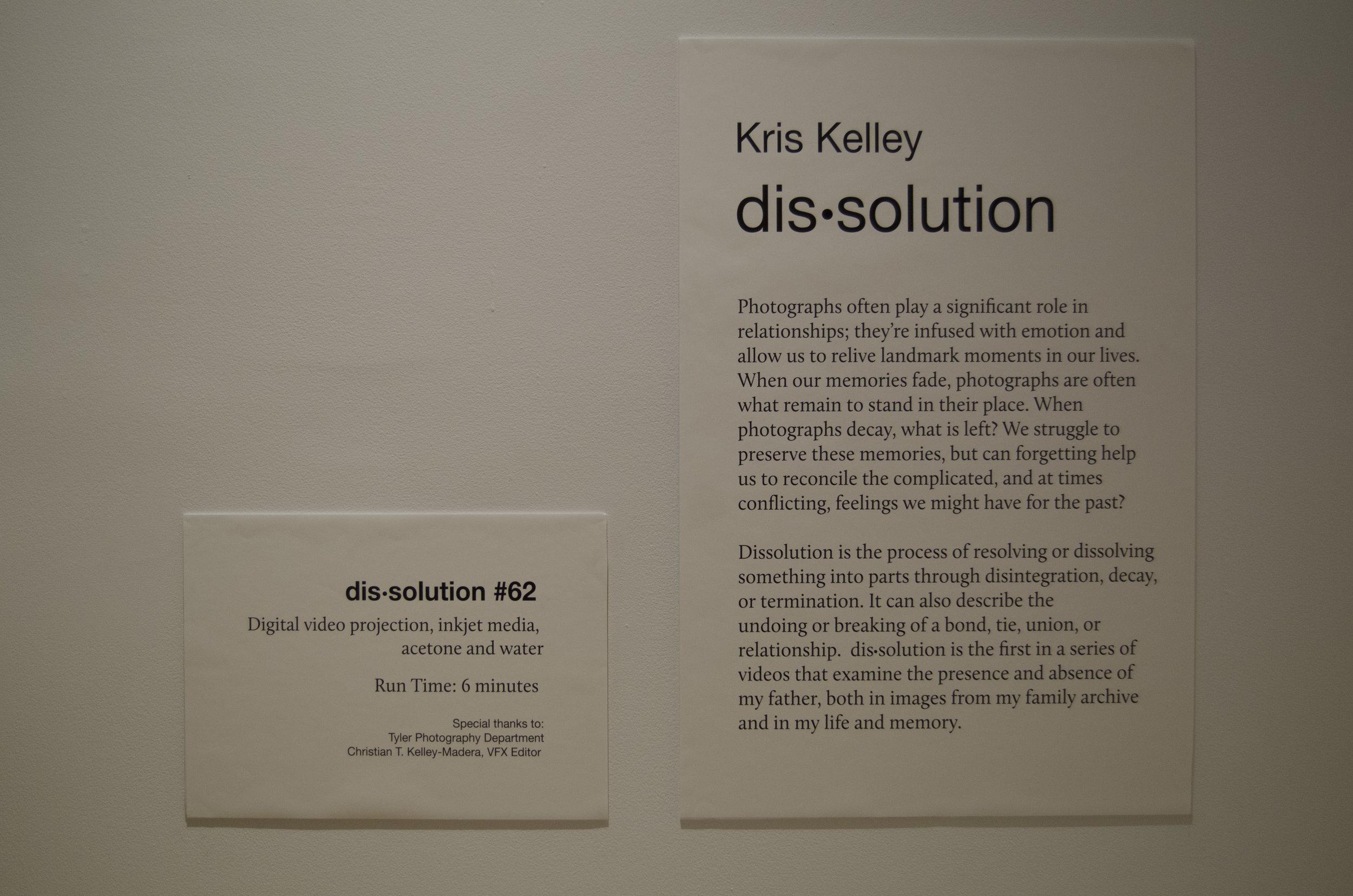 KrisKelley _dissolution installation_Photography_20.jpg