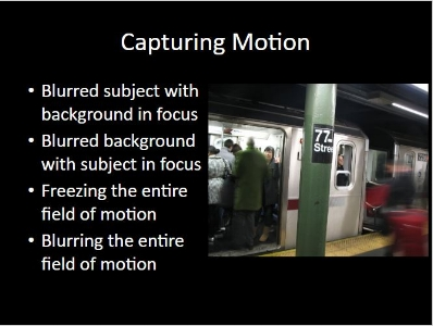 Intro to Street Photography and Intro to Principles of Photography