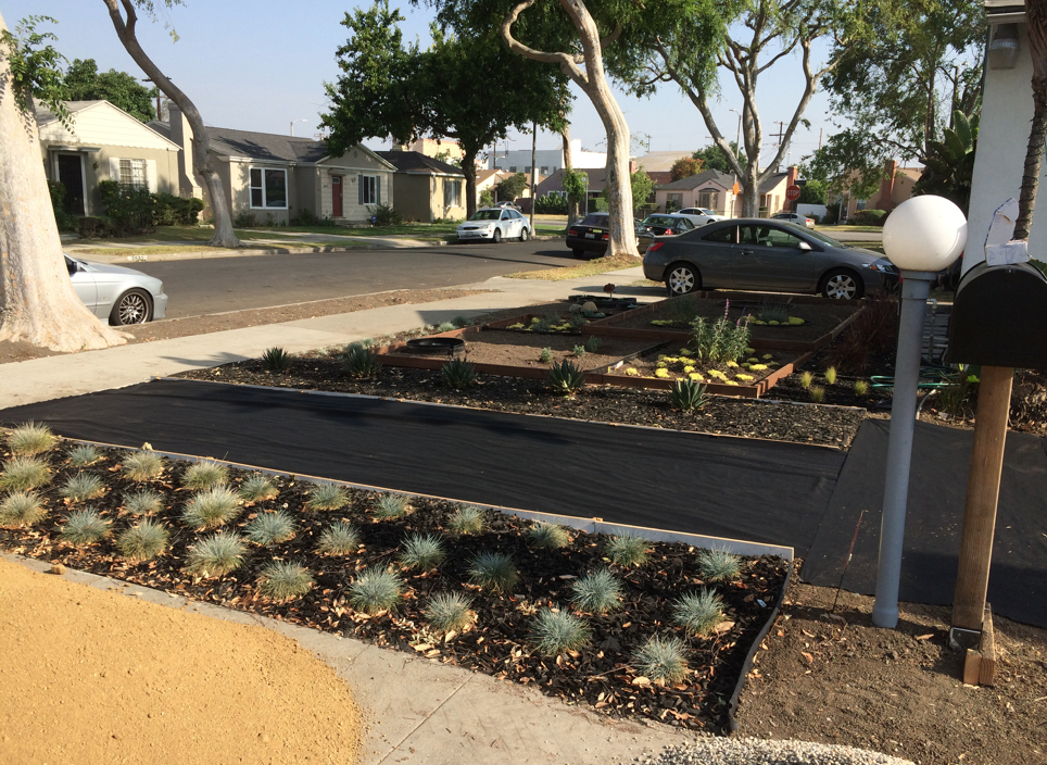 We decided to buy preformed concrete pavers ($14 each) for the walkway. Here we've put down fabric before putting down a bed of gravel and sand.