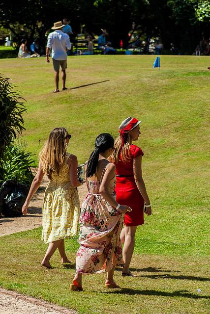 ladies lawn.jpg